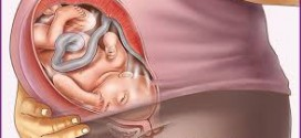 هفته سی ونهم بارداری